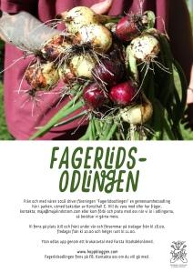 Affisch Maja Lindström gemensamhetsodlingen Fagerlidsparken