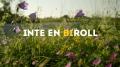 BIROLL-1024x576