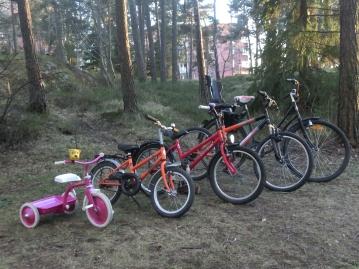 cyklar i olika storlekar