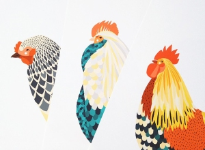 rooster amy blackwell